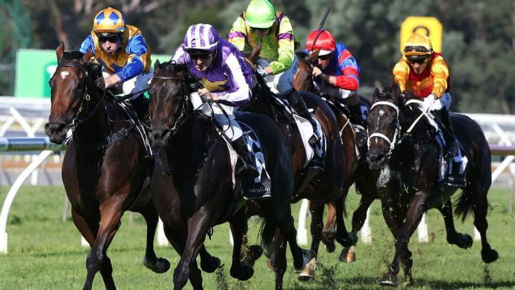 Horse Racing Betting Review