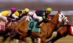 Horse Racing – The Father Of Horse Betting